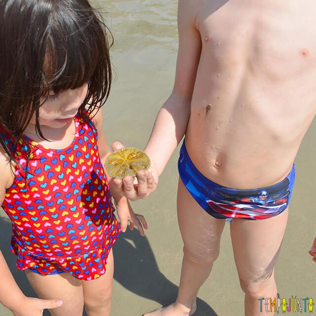 Dicas de estímulo sensorial e físico nas brincadeiras na praia - henrique e larissa com a bolacha do mar