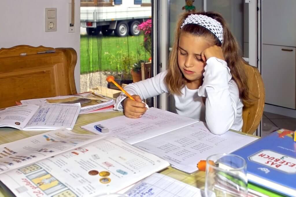 as múltiplas inteligências - nossos filhos não são só a lição de casa da escola